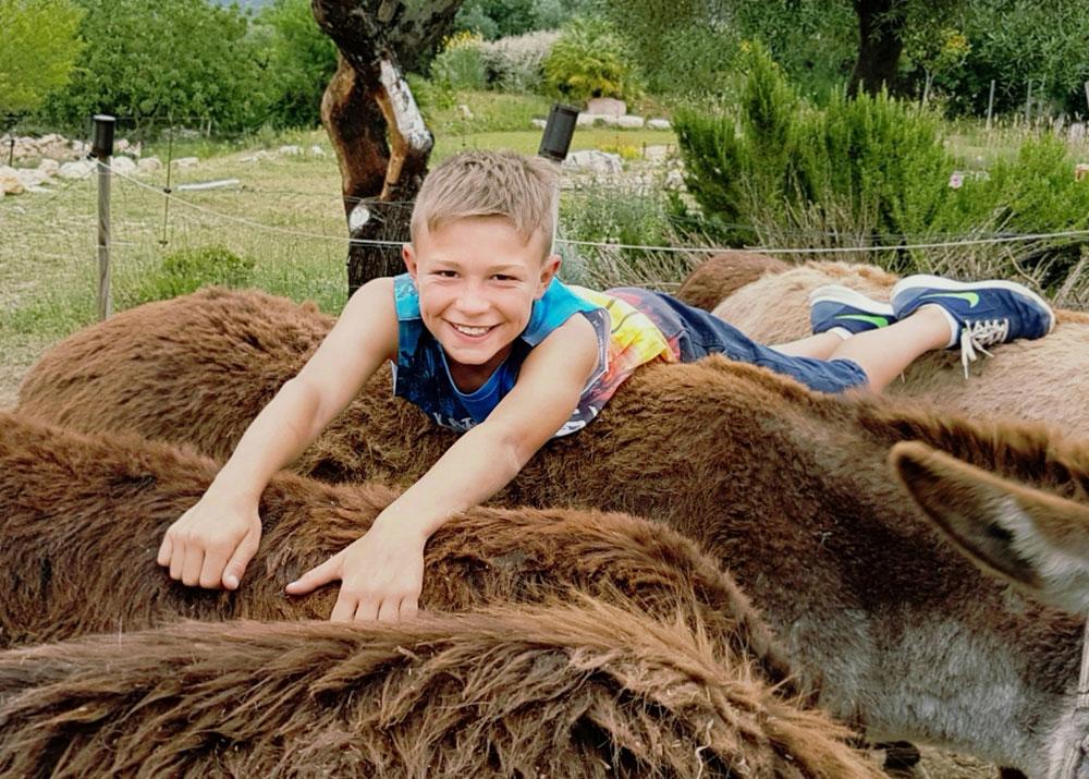 Antonio-auf-4-Esel